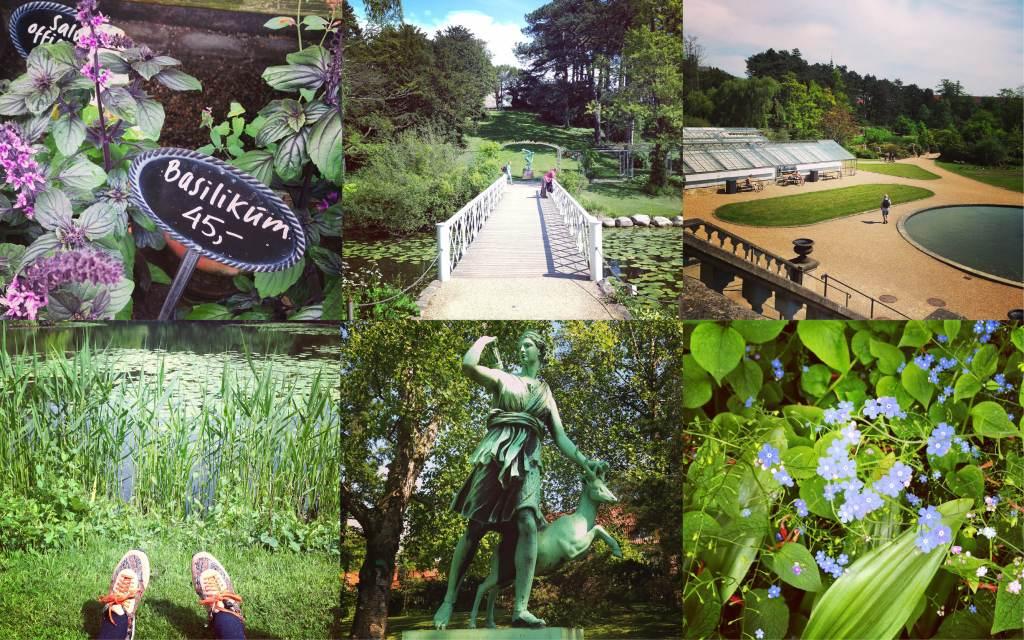 Day 4: The Botanical Gardens