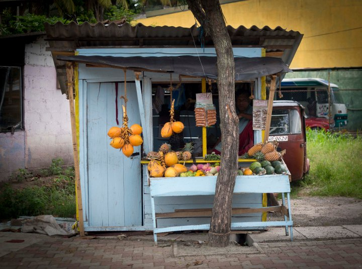 A Man in a Small Blue Shop - Sri Lanka